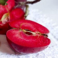 Саженцы яблони Тринити
